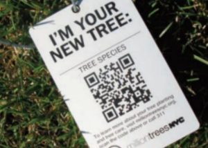 tree tracking